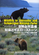 Wildlife in Shiretoko and Yellowstone National Parks