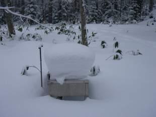 夏のみ使用する開拓小屋の外に設置されたシンク。造形美です。