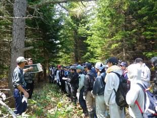 森に入る前に、森づくりのことやヒグマのことを説明しました。