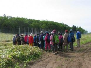 シカ捕獲の大きな柵、これも森づくりの一環です。
