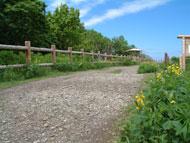 フレペの滝遊歩道