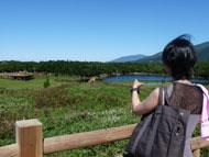 1湖とシカ左奥に湖畔展望台