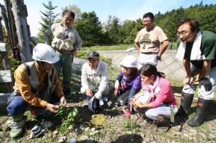作業の合間、森の番人からは、森のこと、動植物のこと、いろいろな話を聞きました。