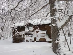 開拓小屋。これからどんどん雪が降り積もり、2月頃には1階部分はすっぽり埋まります。