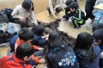 羅臼の小学校でクマ学習を実施しました。