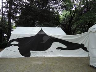 体長7メートルのシャチの実物大の絵