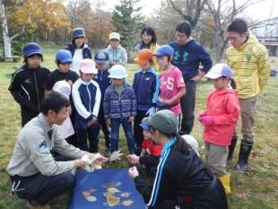 葉っぱの特徴について説明。子どもたちは、たちまち葉っぱ博士でした!