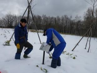 冬の間、看板類は雪に埋もれたり、破損してしまう恐れがあるため、外しています。