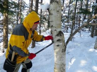 落雪に備えて、フードを被って作業します。