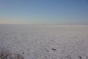 水平線まで一面の流氷です