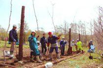 「第18回知床森づくりの日・春」実施報告