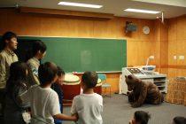 地元の学校でクマ授業を行いました