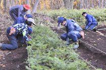 「秋の森づくりボランティア」実施報告