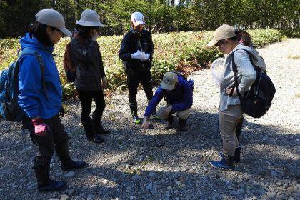 平成30年度 北海道大学獣医学部の野外実習を行いました
