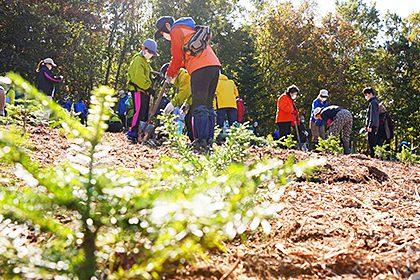 第24回しれとこ森の集い(植樹祭)開催報告