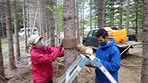 春の森づくり作業を行いました