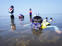 知床自然愛護少年団「夏のデイキャンプ」